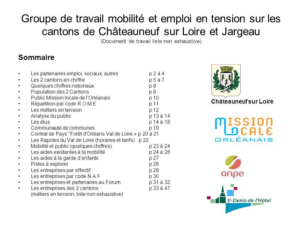 Groupe de travail mobilité et emploi en tension sur les cantons de Châteauneuf sur Loire et Jargeau ( Document de travail liste non exhaustive) Sommai