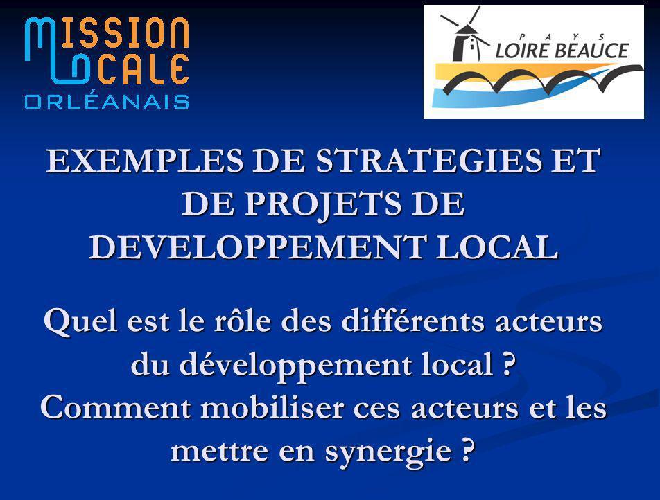 EXEMPLES DE STRATEGIES ET DE PROJETS DE DEVELOPPEMENT LOCAL Quel est le rôle des différents acteurs du développement local .