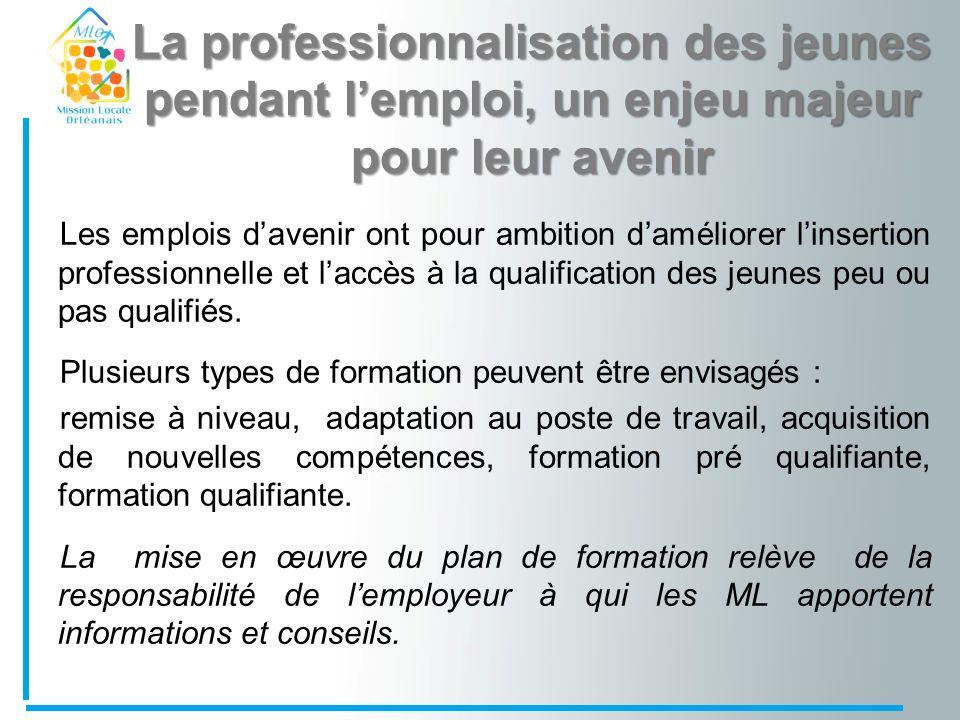 En Orléanais : Objectif 449 Emplois dAvenir 52% de lobjectif du Loiret 12% de lobjectif de la Région Centre Taux de réalisation 115 contrats signés soit 25%