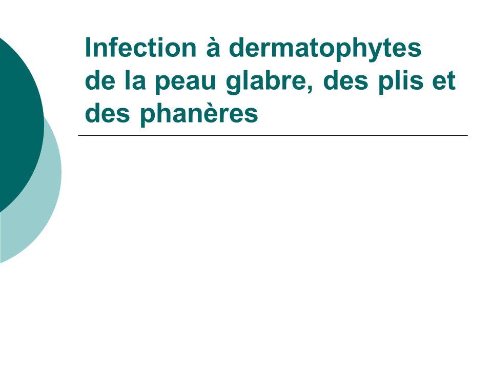 Infection à dermatophytes de la peau glabre, des plis et des phanères
