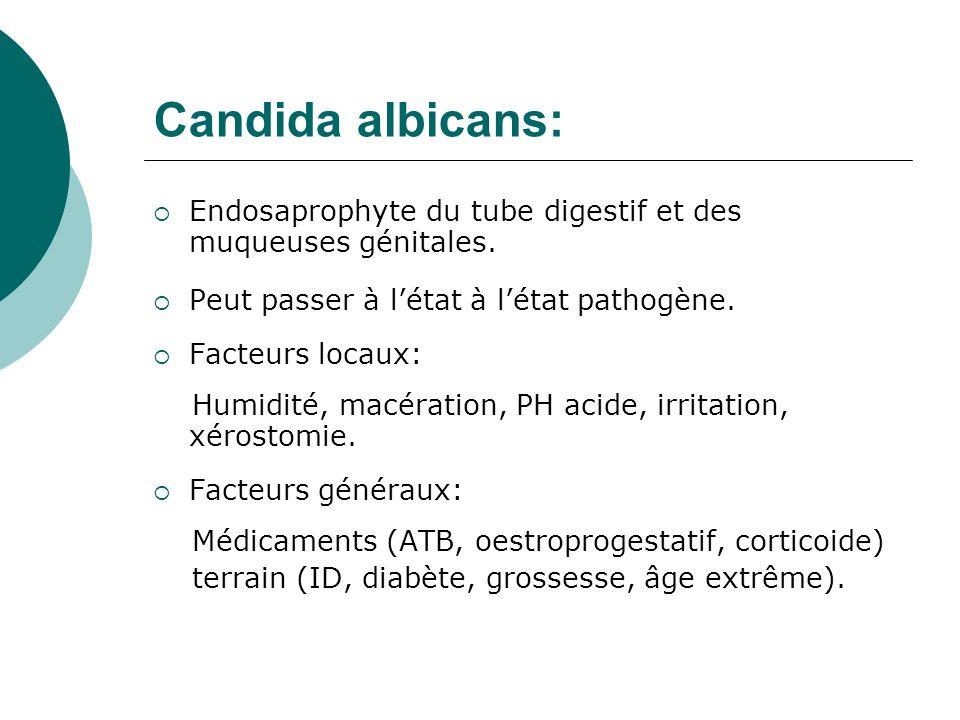 Candida albicans: Endosaprophyte du tube digestif et des muqueuses génitales. Peut passer à létat à létat pathogène. Facteurs locaux: Humidité, macéra