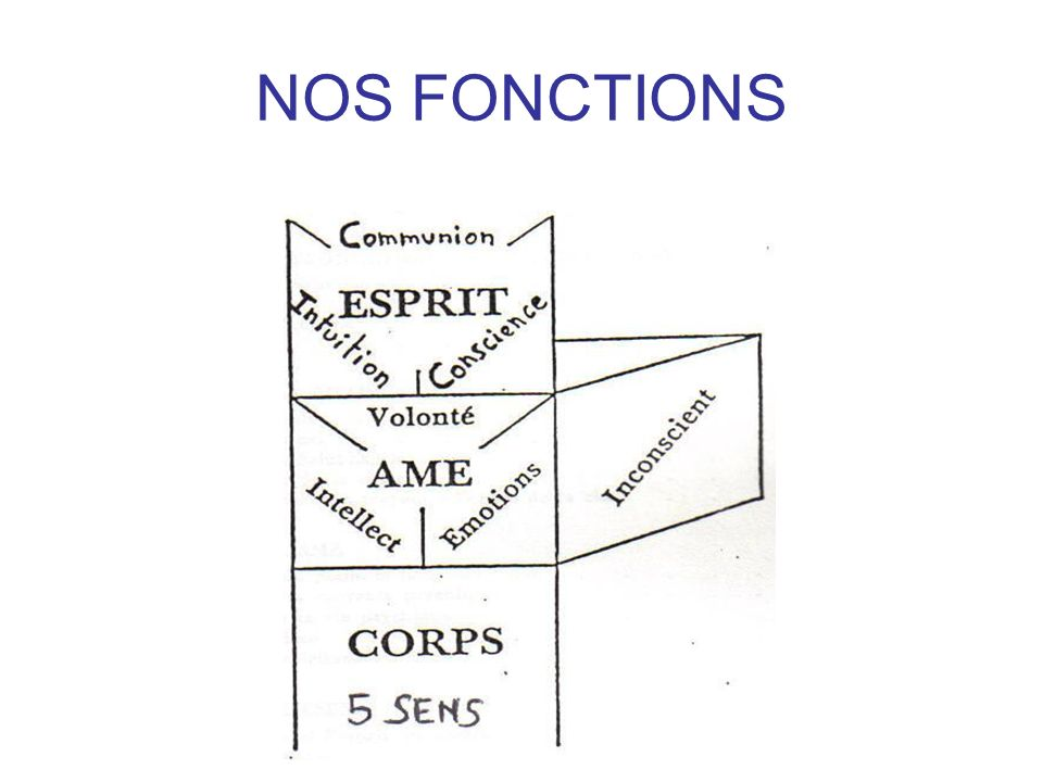 NOS FONCTIONS