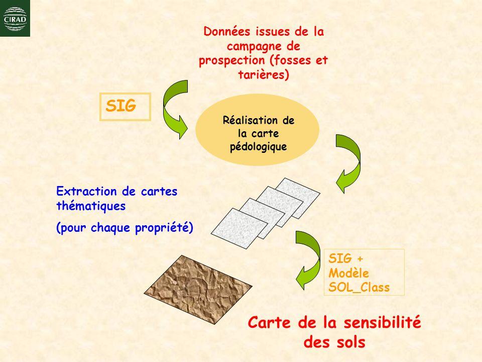 Données issues de la campagne de prospection (fosses et tarières) Réalisation de la carte pédologique SIG SIG + Modèle SOL_Class Carte de la sensibili