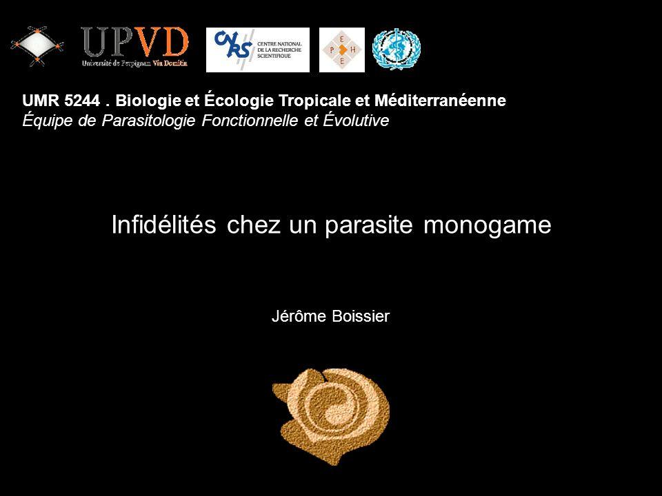 Infidélités chez un parasite monogame Jérôme Boissier UMR 5244. Biologie et Écologie Tropicale et Méditerranéenne Équipe de Parasitologie Fonctionnell