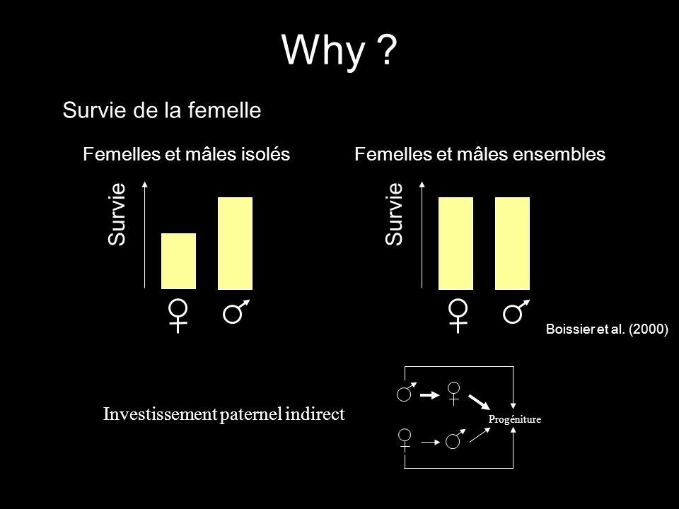 Femelles et mâles isolésFemelles et mâles ensembles Survie Boissier et al. (2000) Progéniture Investissement paternel indirect Survie de la femelle Wh