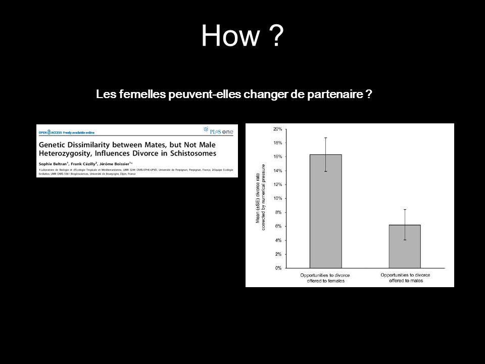 How ? Les femelles peuvent-elles changer de partenaire ?