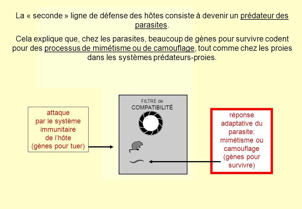 La « seconde » ligne de défense des hôtes consiste à devenir un prédateur des parasites. Cela explique que, chez les parasites, beaucoup de gènes pour