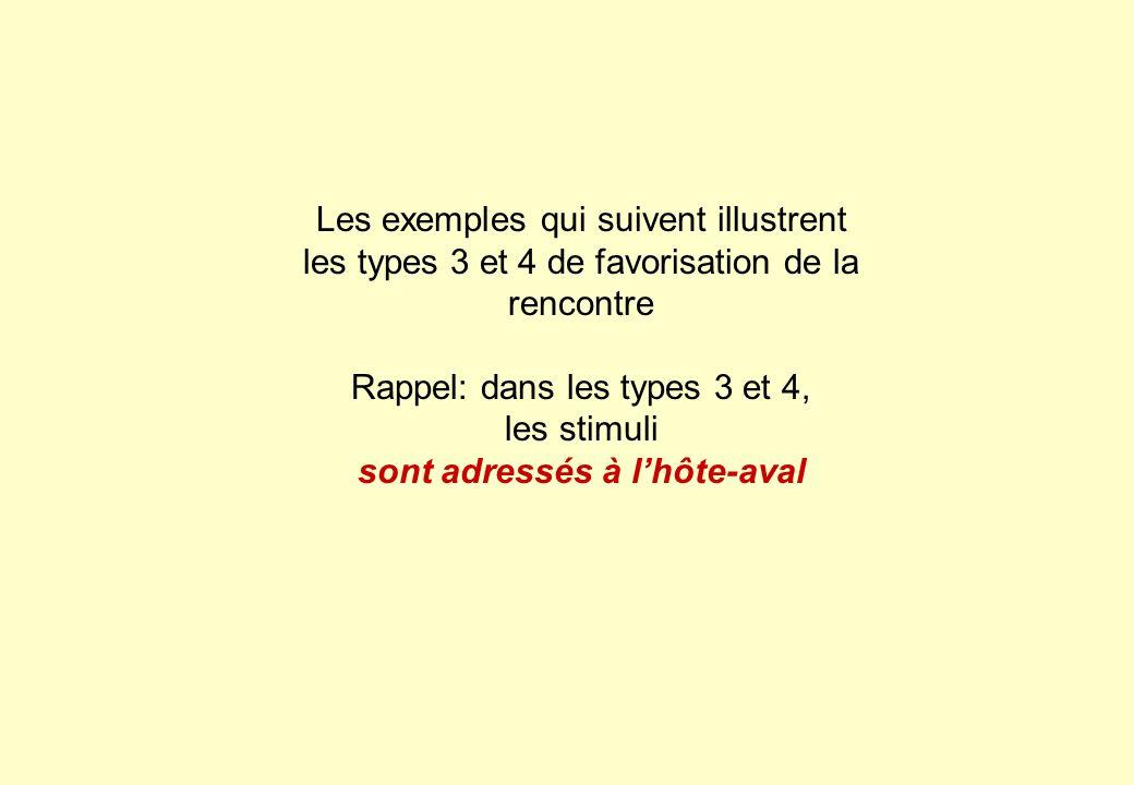 Les exemples qui suivent illustrent les types 3 et 4 de favorisation de la rencontre Rappel: dans les types 3 et 4, les stimuli sont adressés à lhôte-