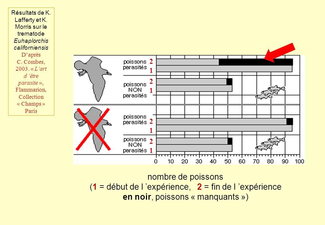 nombre de poissons (1 = début de l expérience, 2 = fin de l expérience en noir, poissons « manquants ») 2121 2121 2121 2121 Résultats de K. Lafferty e
