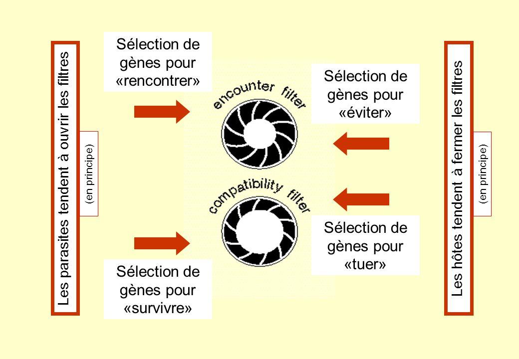 Deux remarques: a) les deux courses ne sont pas « indépendantes »: par exemple, à la sélection de gènes pour rencontrer dans une population de parasites, une population dhôtes peut répondre par la sélection de gènes pour tuer…