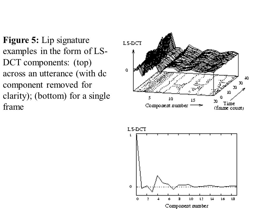 Figure 5: Lip signature examples in the form of LS- DCT components: (top) across an utterance (with dc component removed for clarity); (bottom) for a