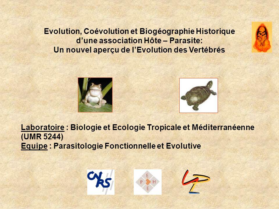 Approches de biogéographie vicariante TREEMAP 2.0β (Charleston & Page, 2002) Coûts Allopatric speciation = 0 Sympatric speciation = 1 Dispersal = 1 Extinction = 1