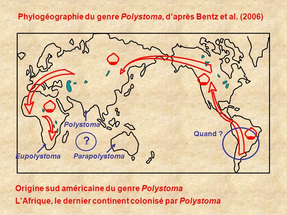 Phylogéographie du genre Polystoma, daprès Bentz et al. (2006) Origine sud américaine du genre Polystoma LAfrique, le dernier continent colonisé par P