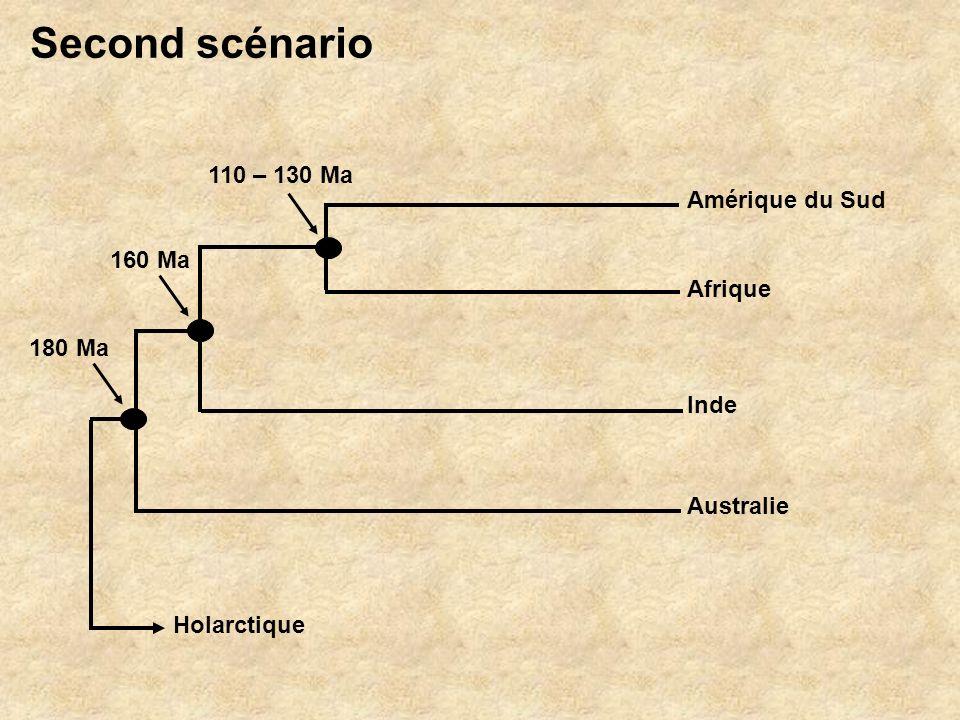 Amérique du Sud Afrique Australie Inde Holarctique 110 – 130 Ma 180 Ma 160 Ma Second scénario