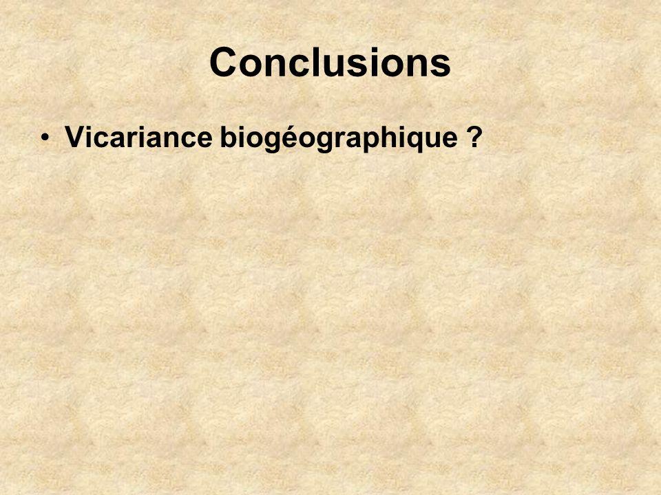 Conclusions Vicariance biogéographique ?