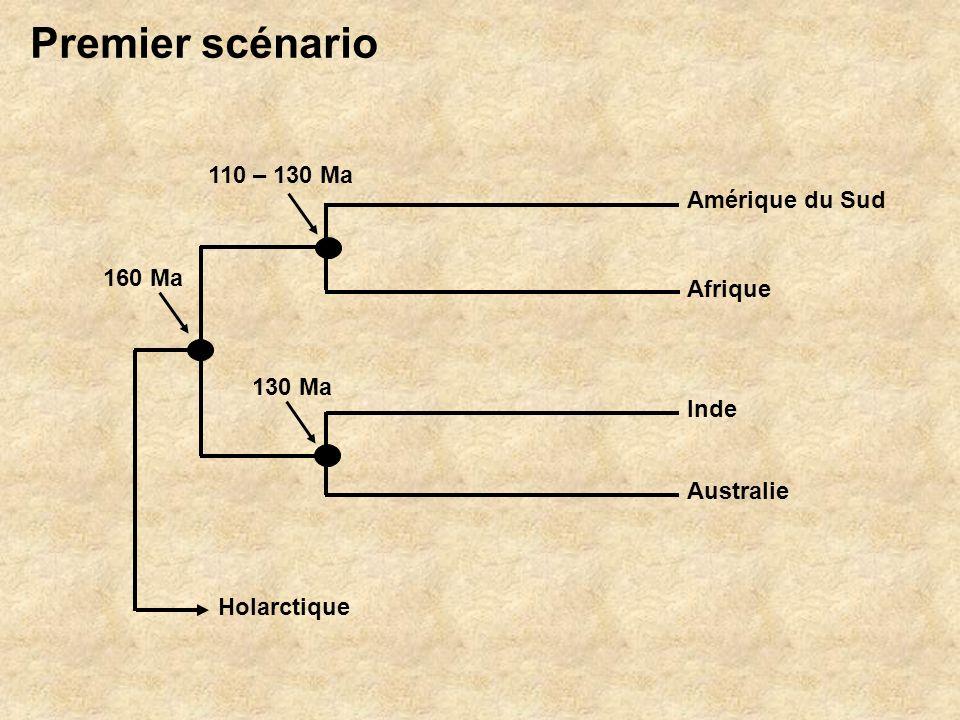 Amérique du Sud Afrique Australie Inde Holarctique 110 – 130 Ma 130 Ma 160 Ma Premier scénario