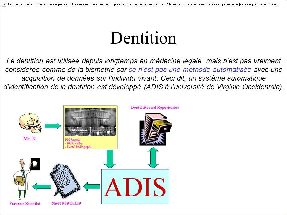 Dentition La dentition est utilisée depuis longtemps en médecine légale, mais n'est pas vraiment considérée comme de la biométrie car ce n'est pas une
