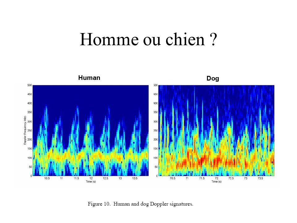 Homme ou chien ?