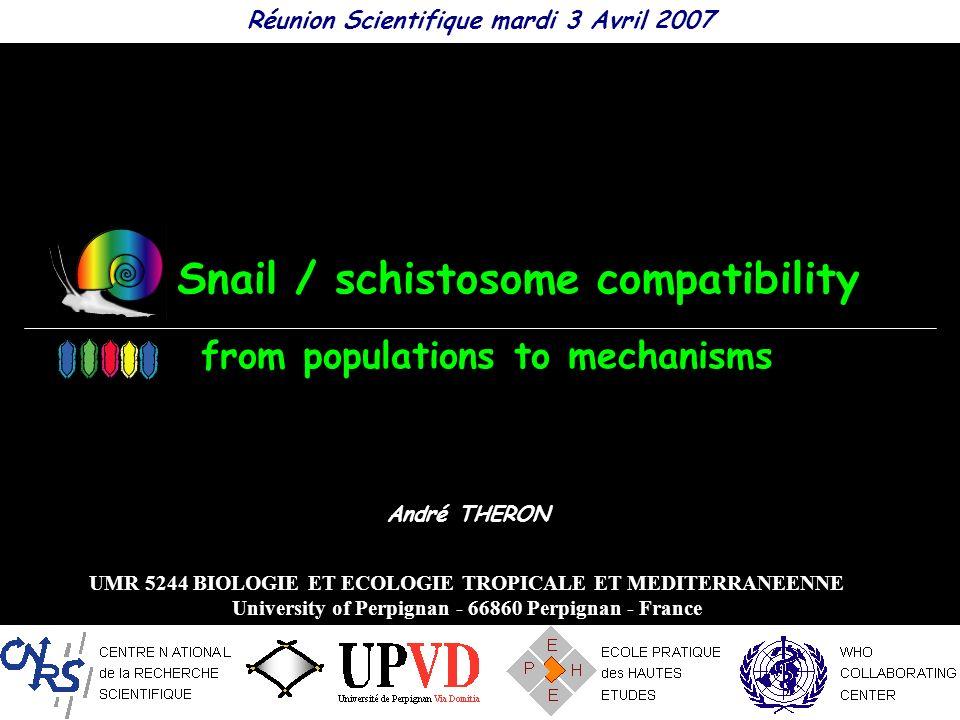 Snail / schistosome compatibility Réunion Scientifique mardi 3 Avril 2007 André THERON UMR 5244 BIOLOGIE ET ECOLOGIE TROPICALE ET MEDITERRANEENNE Univ