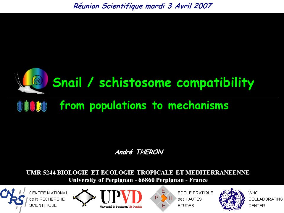 Mollusc / Trematode models Trematode life cycles Schistosoma mansoni Biomphalaria glabrata