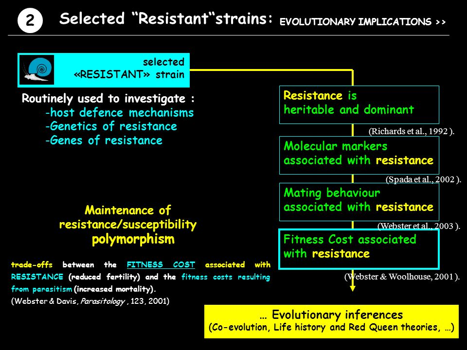 … Evolutionary inferences (Co-evolution, Life history and Red Queen theories, …) Fitness Cost associated with resistance (Webster & Woolhouse, 2001 ).