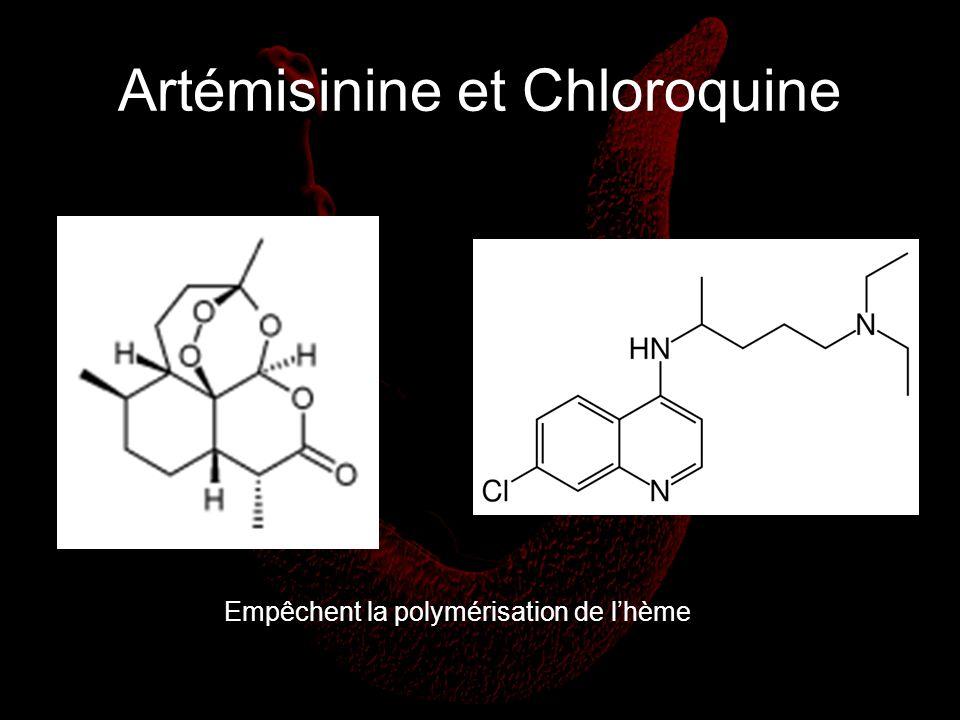 Artémisinine et Chloroquine Empêchent la polymérisation de lhème