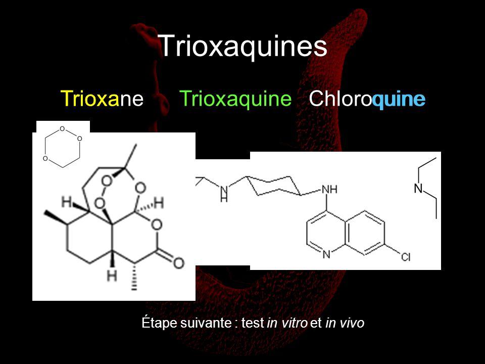 Trioxaquines TrioxaneChloroquineTrioxaTrioxaquinequine Étape suivante : test in vitro et in vivo