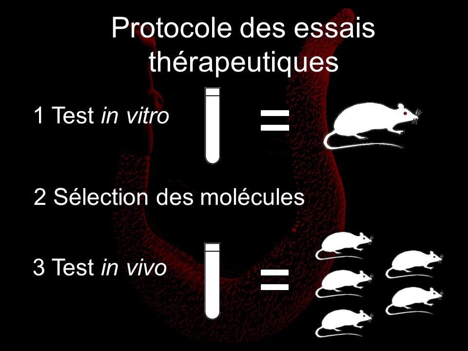 Protocole des essais thérapeutiques 1 Test in vitro 3 Test in vivo 2 Sélection des molécules