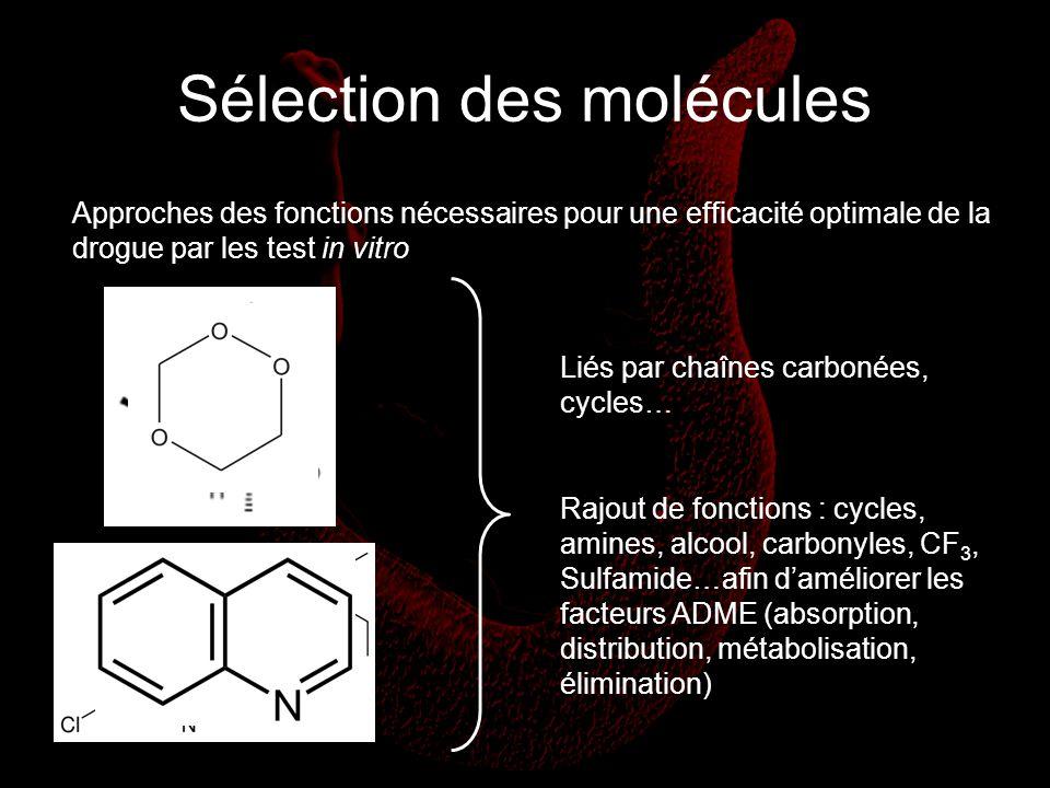 Sélection des molécules Approches des fonctions nécessaires pour une efficacité optimale de la drogue par les test in vitro Liés par chaînes carbonées