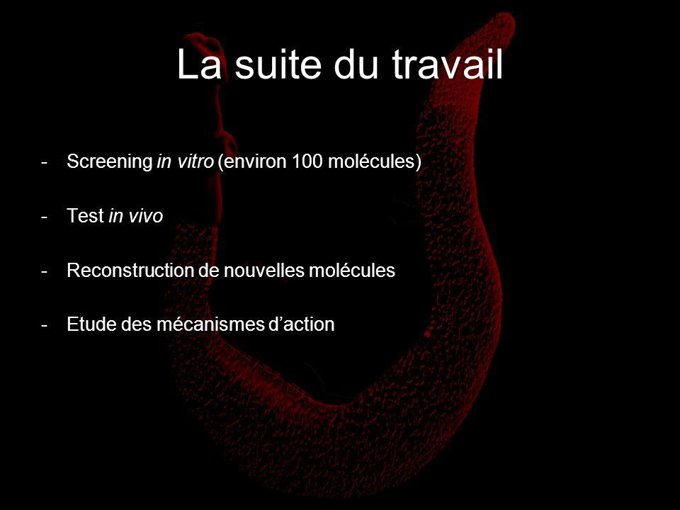 La suite du travail -Screening in vitro (environ 100 molécules) -Test in vivo -Reconstruction de nouvelles molécules -Etude des mécanismes daction