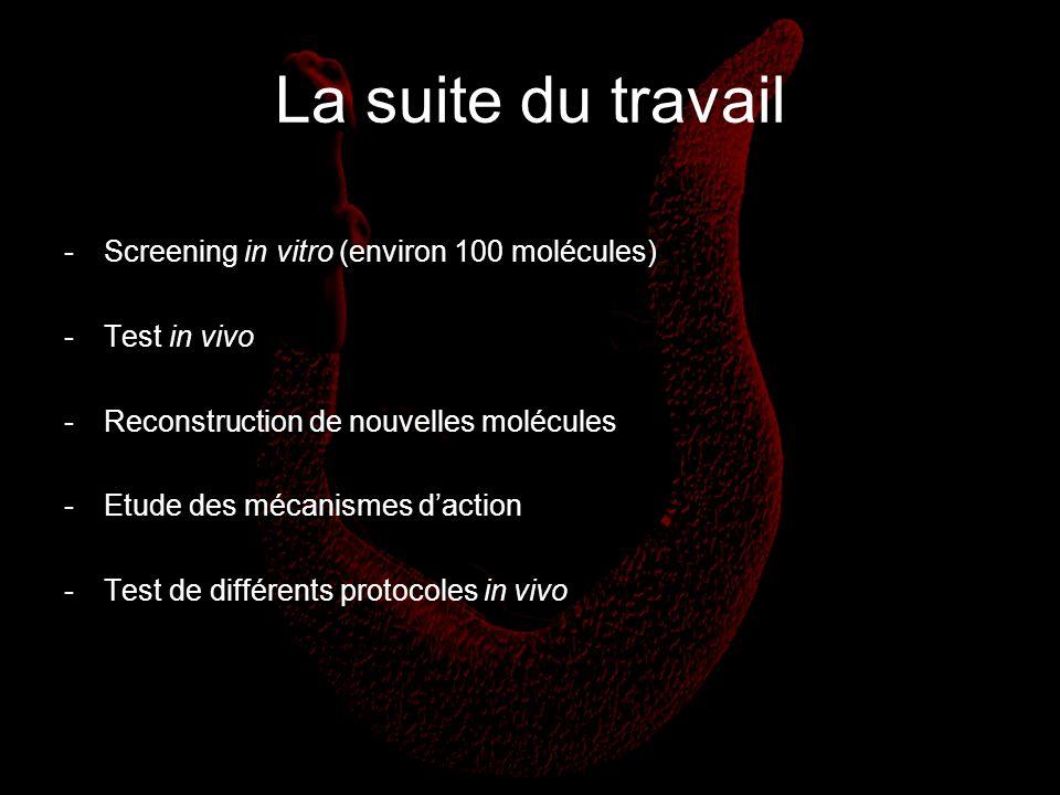 La suite du travail -Screening in vitro (environ 100 molécules) -Test in vivo -Reconstruction de nouvelles molécules -Etude des mécanismes daction -Te