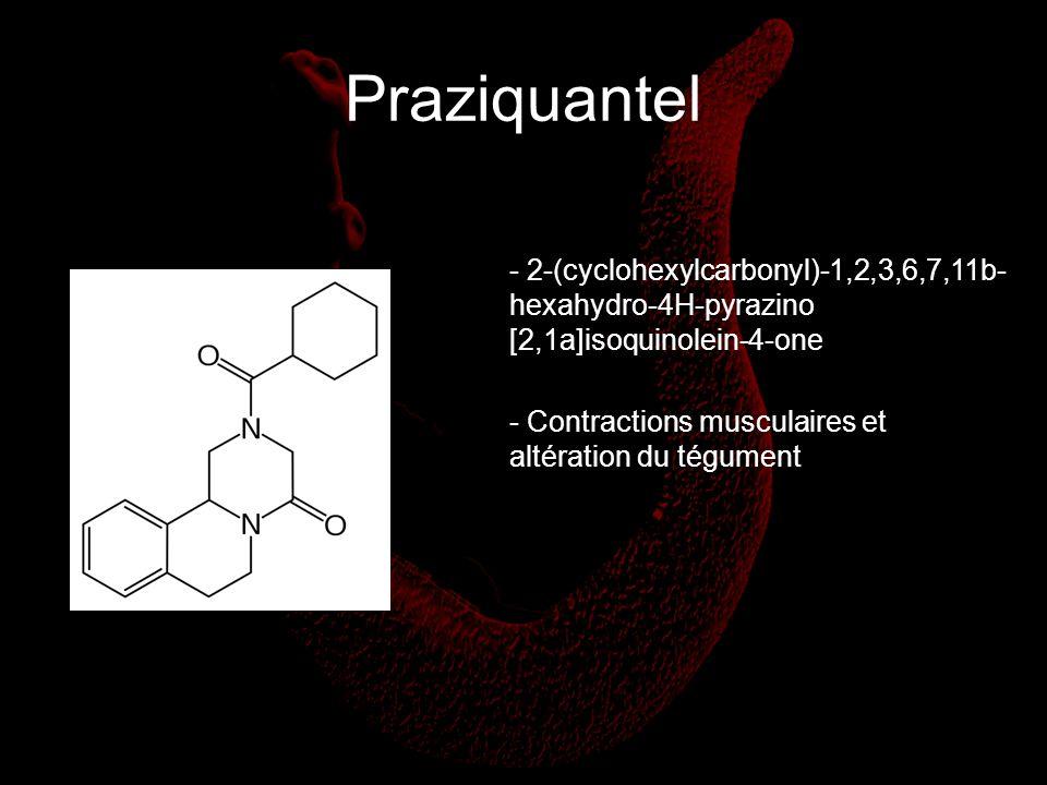 Praziquantel - Contractions musculaires et altération du tégument - 2-(cyclohexylcarbonyl)-1,2,3,6,7,11b- hexahydro-4H-pyrazino [2,1a]isoquinolein-4-o