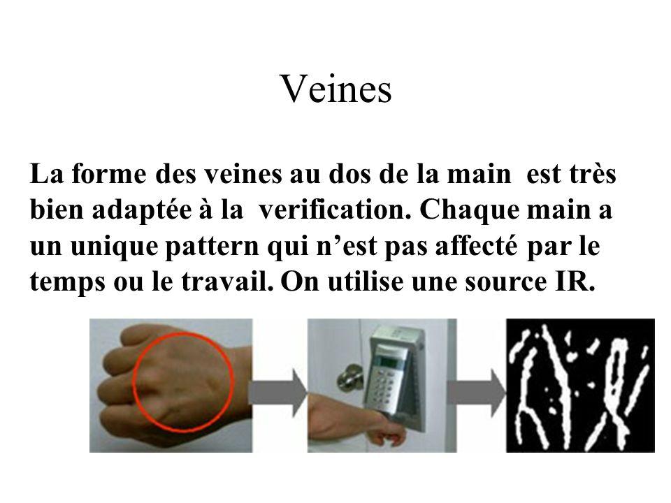 Veines La forme des veines au dos de la main est très bien adaptée à la verification.