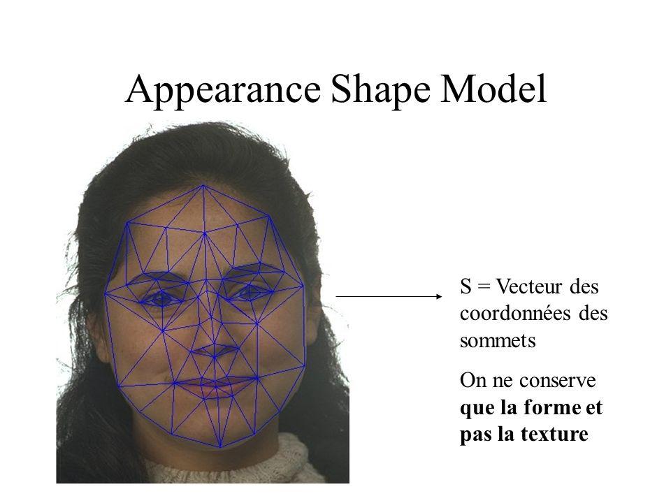 Appearance Shape Model S = Vecteur des coordonnées des sommets On ne conserve que la forme et pas la texture
