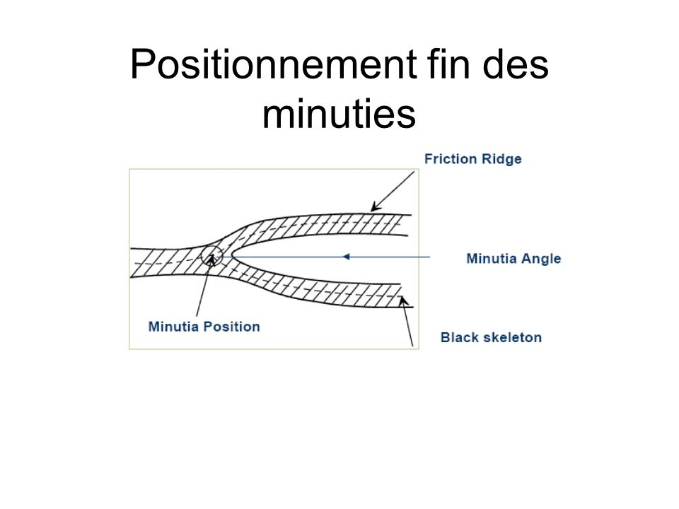 Positionnement fin des minuties