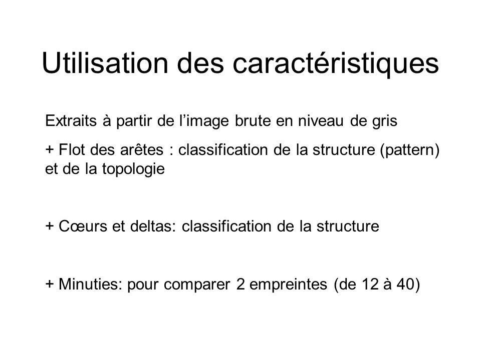 Utilisation des caractéristiques Extraits à partir de limage brute en niveau de gris + Flot des arêtes : classification de la structure (pattern) et d