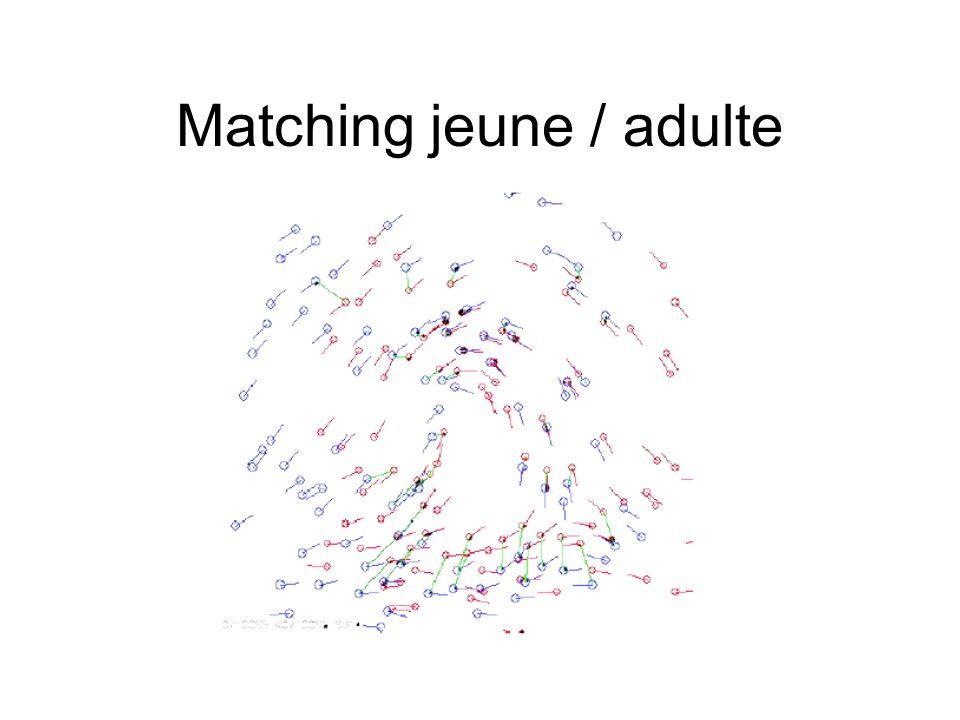 Matching jeune / adulte