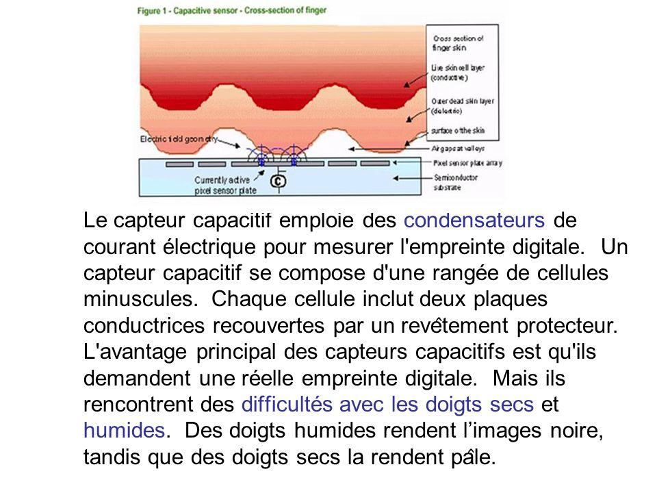 Le capteur capacitif emploie des condensateurs de courant électrique pour mesurer l'empreinte digitale. Un capteur capacitif se compose d'une rangée