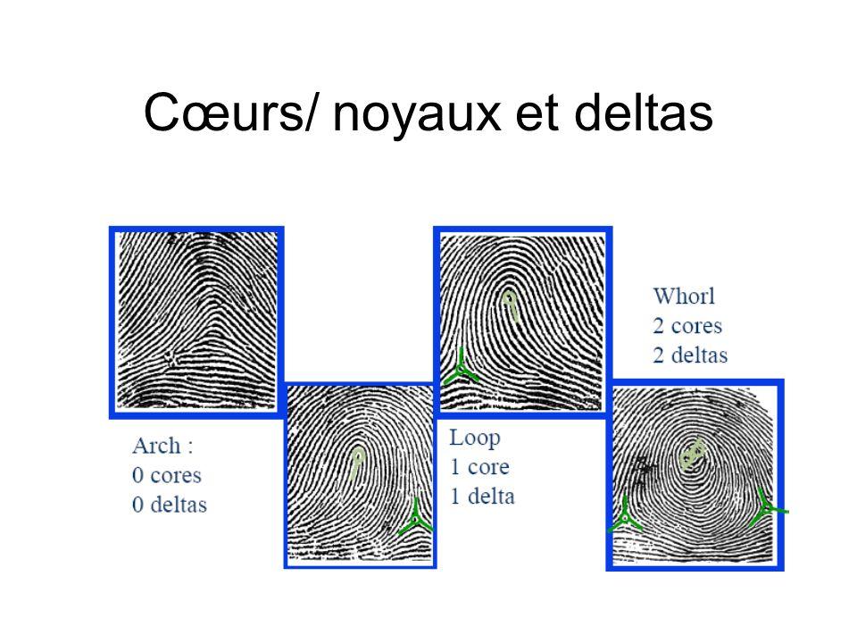 Cœurs/ noyaux et deltas