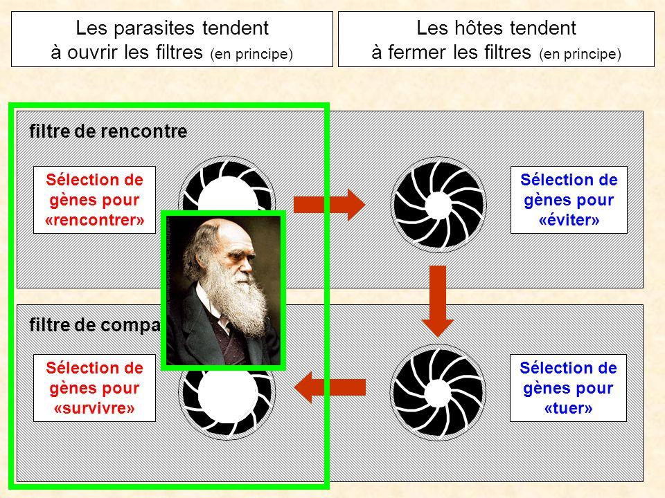 Sélection de gènes pour «éviter» Sélection de gènes pour «tuer» Sélection de gènes pour «survivre» Sélection de gènes pour «rencontrer» Les parasites