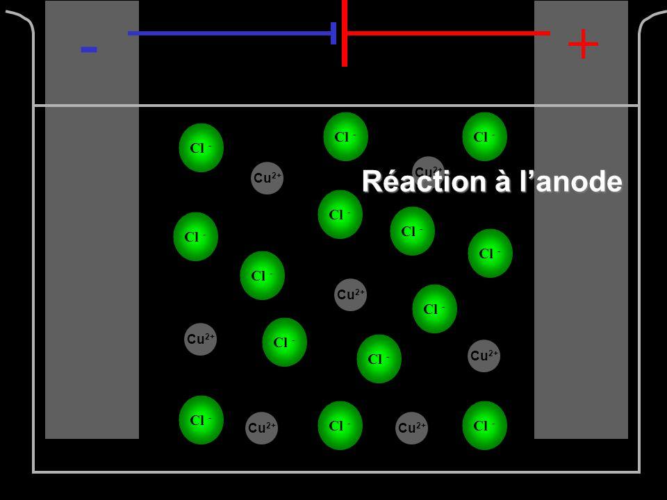 Cl - -+ Cu 2+ Réaction à lanode : 2Cl - (aq) 2Cl 0 (aq) + 2e -
