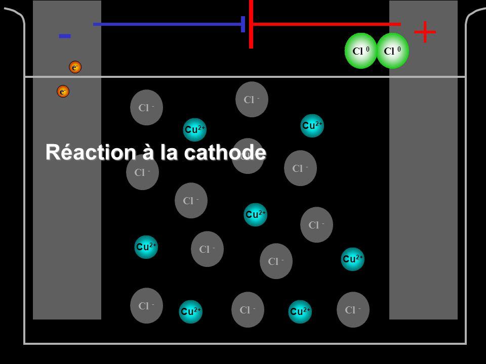 Cl - -+ e-e- e-e- Cl 0 Cu 2+ Réaction à la cathode Cu 2+