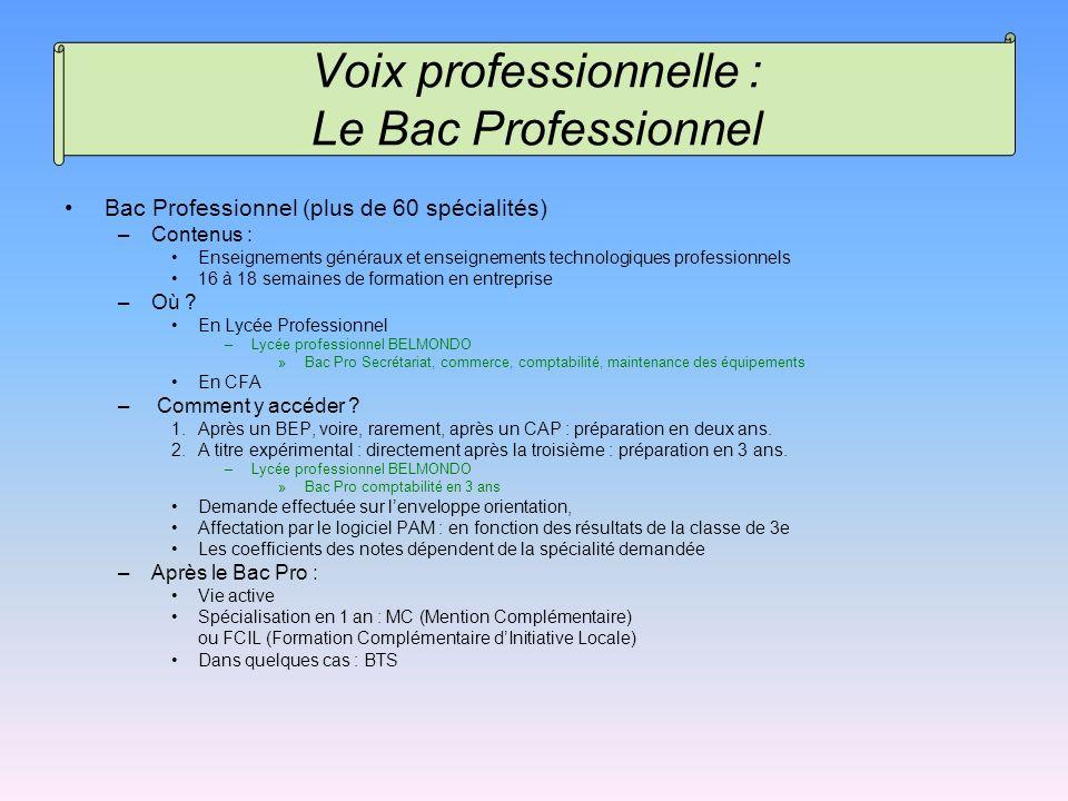 Bac Professionnel (plus de 60 spécialités) –Contenus : Enseignements généraux et enseignements technologiques professionnels 16 à 18 semaines de forma