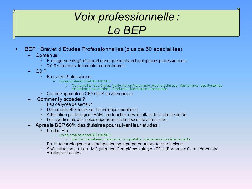 BEP : Brevet dEtudes Professionnelles (plus de 50 spécialités) –Contenus : Enseignements généraux et enseignements technologiques professionnels 3 à 8