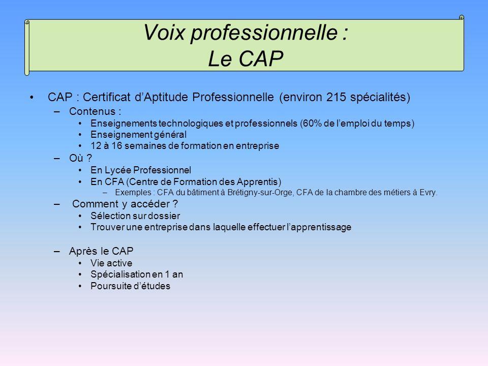CAP : Certificat dAptitude Professionnelle (environ 215 spécialités) –Contenus : Enseignements technologiques et professionnels (60% de lemploi du tem