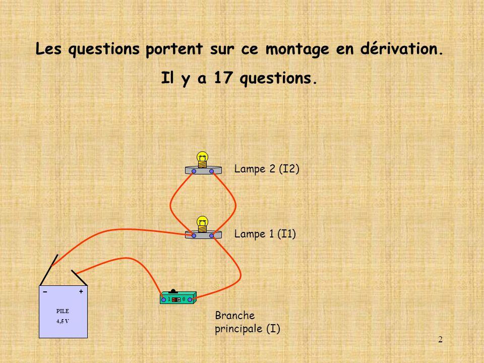 2 10 PILE 4,5 V + - Lampe 1 (I1) Lampe 2 (I2) Les questions portent sur ce montage en dérivation. Il y a 17 questions. Branche principale (I)