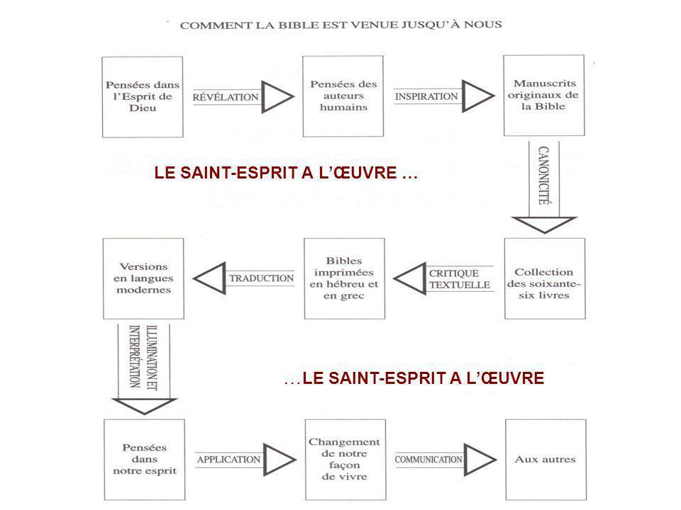 LE SAINT-ESPRIT A LŒUVRE … … LE SAINT-ESPRIT A LŒUVRE