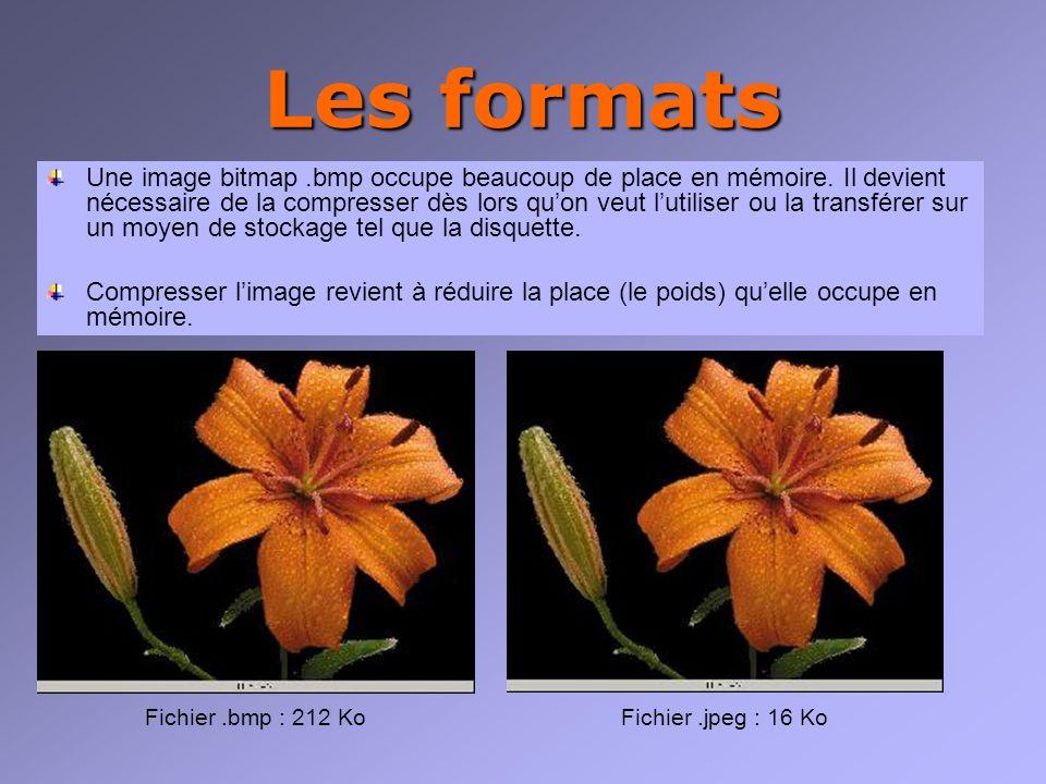 Les formats Une image bitmap.bmp occupe beaucoup de place en mémoire.