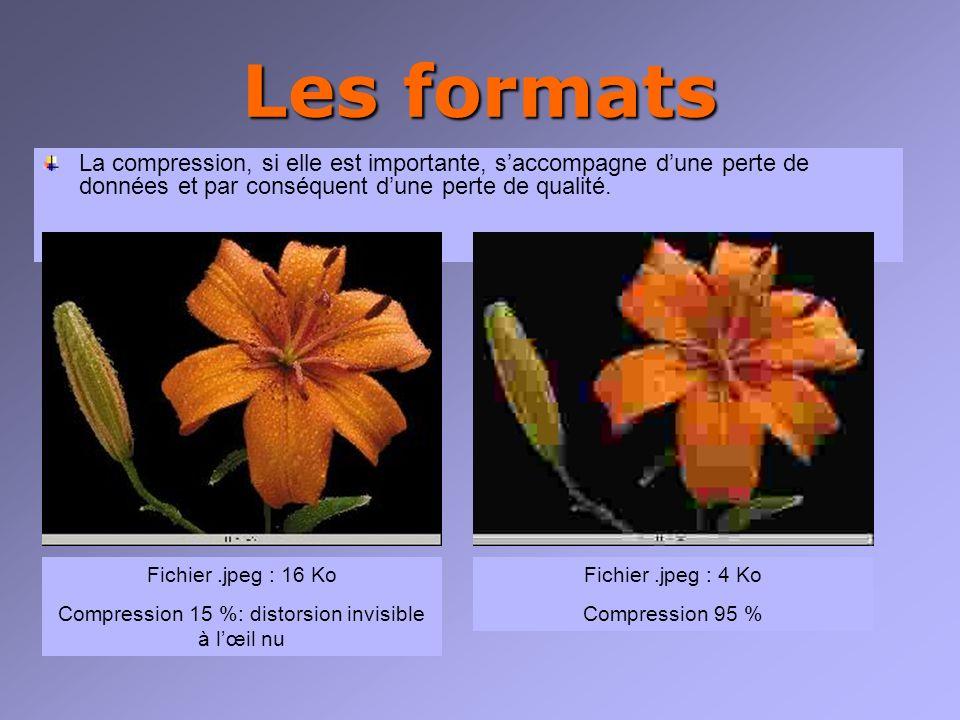 Les formats La compression, si elle est importante, saccompagne dune perte de données et par conséquent dune perte de qualité.
