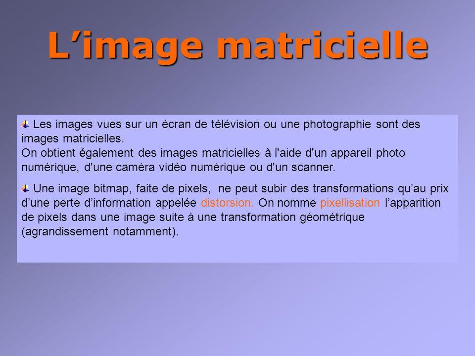 Limage matricielle Exemples dimages pixellisées : Image originale Image agrandie